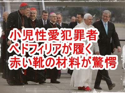 小児性愛犯罪者ペドフィリアが履いている赤い靴の材料を知っていますか?奴らは日常的に子供たちを虐殺しています
