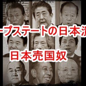 気になるニュース(2020/8/24)シューマン共振・重慶大洪水・中国共産党の暴力と人肉食と臓器・コロナ騒動の真実・コロナワクチン・安倍拘束か?