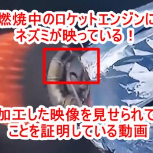 サイキックLJさんの今後の動向(2021/1/31) ・共和党と民主党の対決ではなく善悪の戦い! ・オーストラリアで非常に大きなニュース ・スーパーボウルイベントで何かが起こる!? ・水面下で行われている大掛かりな軍事作戦 ・闇勢力は自滅する ・日本と台湾はレイラインで守護されている!