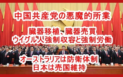 中国共産党の悪魔的な人権侵害と貿易相手国への報復について及川幸久さん動画のまとめ!奴隷強制労働に加担する日本企業11社、臓器移植、対外圧力・報復措置のやり方
